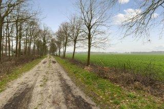 Oshaarseweg 2480 ECHTEN