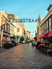 Molenijserstraat 21 Den Haag